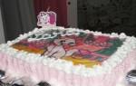 Aniversário de Lara (3)