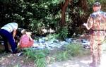 Descarte de resíduos sólidos é proibido em qualquer área